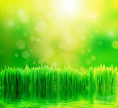 Backgrounds Photograph - Green Nature Background With Fresh Grass by Michal Bednarek