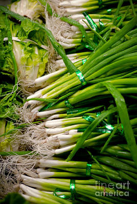 Green Onions Print by Amy Cicconi