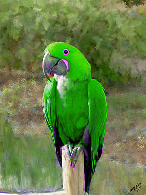 Green Painting - Green Parroquet by Bruce Nutting