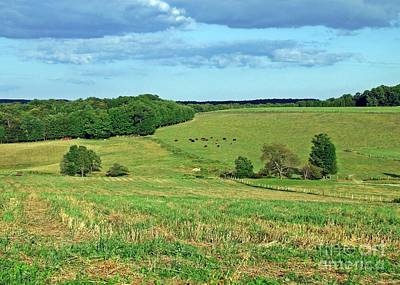 Photograph - Green Pasture by Christian Mattison