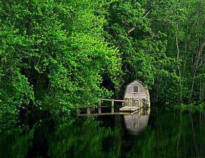 Concord Massachusetts Photograph - Green Reflections by Kerri Ann Crau