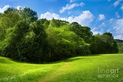 Photograph - Green Relaxing by Lutz Baar