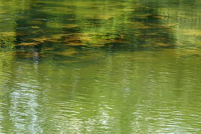 Photograph - Green River by Matthew Pace