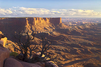 Photograph - Green River Mesa by Jim Dollar