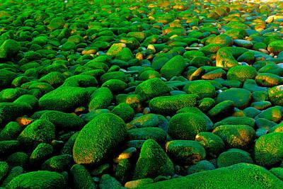 Photograph - Green Rock by Edgar Laureano