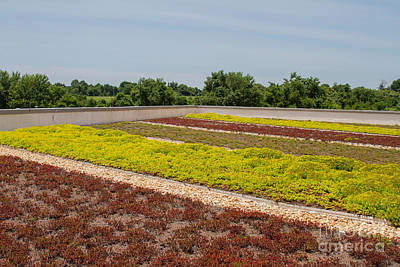 Photograph - Green Roof Howard County by Chris Scroggins