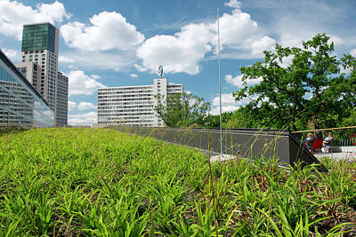 Budapest Photograph - Green Roof by Louise Murray