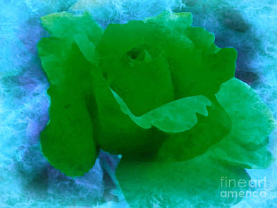 Photograph - Green Rose In Blue by Ava Larsen