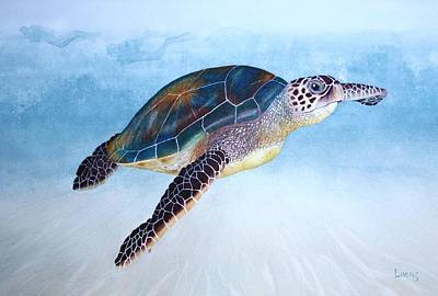 Seagrass Painting - Green Sea Turtle II by Jeff Lucas