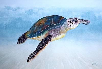 Green Sea Turtle II Art Print by Jeff Lucas