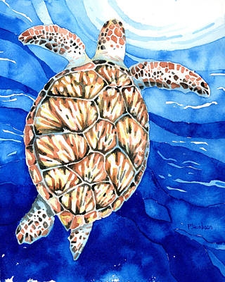 Painting - Green Sea Turtle Surfacing by Pauline Jacobson