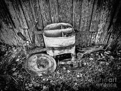 Photograph - Green Seeder 4- Bw Hdr by Lesa Fine