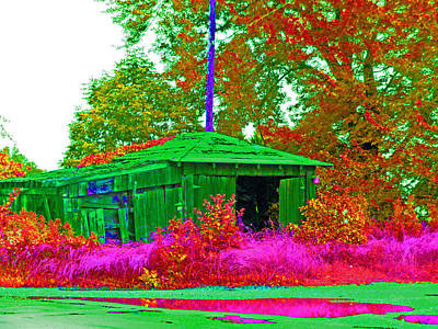 Shed Digital Art - Green Shack Day by Joseph Wiegand