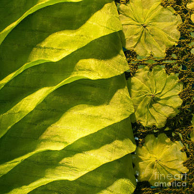 Photograph - Green Silk 03 by Rick Piper Photography