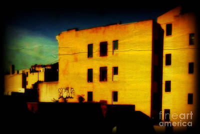 Photograph - Green Sky by Miriam Danar