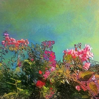 Painting - Green Sky With Pink Bougainvillea - Square by Lyn Voytershark