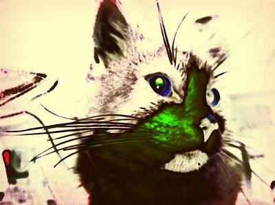 Green Spot Kitty Art Print