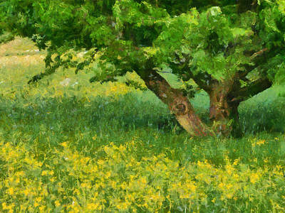 Impressionism Photos - Green spring meadow with yellow flowers and tree - digital painting by Matthias Hauser