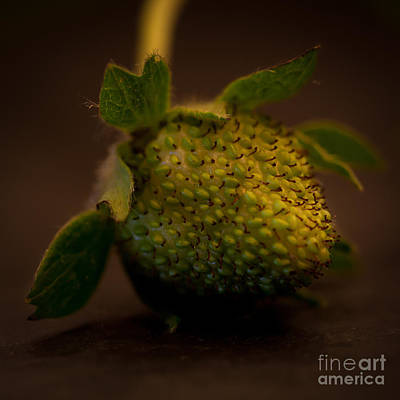 Green Strawberry Square Art Print by Patricia Bainter