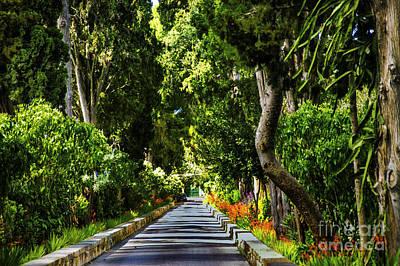 Photograph - Green Street Malta by Rick Bragan