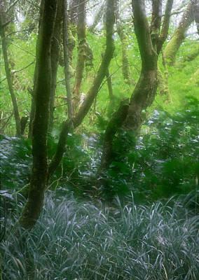 Green Study Art Print by Kim Lessel