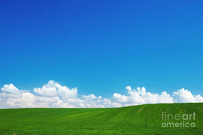 Lawn Photograph - Green Summer Landscape by Michal Bednarek