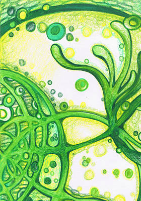 Swirly Drawing - Green Swirls Abstract  by Laura Noel
