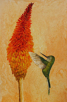 Painting - Green Tailed Trainbearer Hummingbird by Patricia Beebe