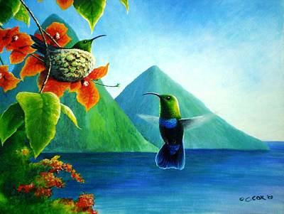 Painting - Green-throated Carib And Bougainvillea by Christopher Cox