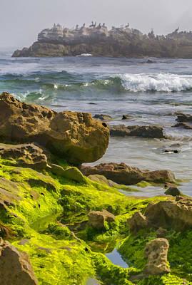 Laguna Beach Digital Art - Green Tide Pools And Pelicans by Scott Campbell