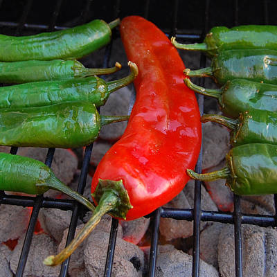 Green Chile Photograph - Green To Red by Steven Milner