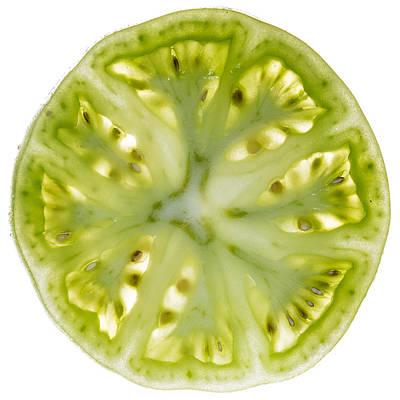 Green Tomato Slice Art Print by Steve Gadomski