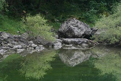 Photograph - Green Tree Reflection  Lac Des Eaux Chaudes by Phoenix De Vries