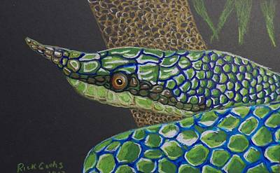 Green Tree Snake Art Print by Richard Goohs