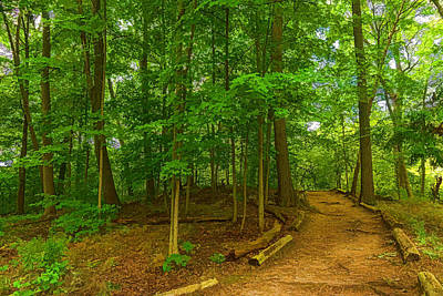 Pathway Digital Art - Green Trees - Impressions Of Forests by Georgia Mizuleva