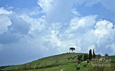 Tuscan Hills Photograph - Green Tuscan Hills by Heiko Koehrer-Wagner