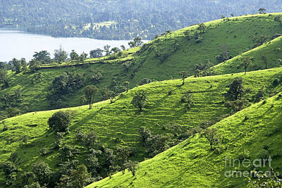 Incline Photograph - Green Valley 2 by Hitendra SINKAR