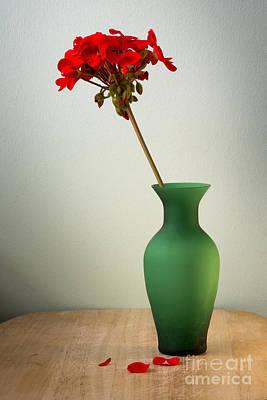 Green Vase Art Print by Donald Davis