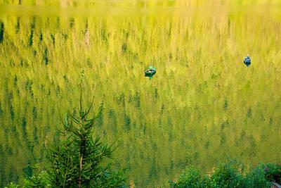 Photograph - Green Vertigo by Marco Busoni