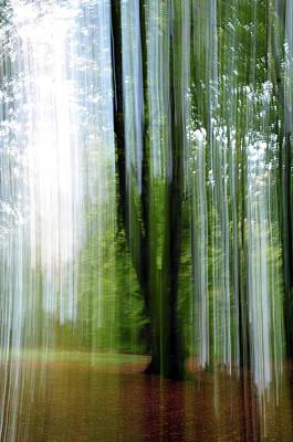 Photograph - Green Vision by Randi Grace Nilsberg