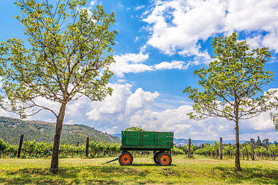 Wine Cart Photograph - Green Wagon And Vineyard by Jess Kraft