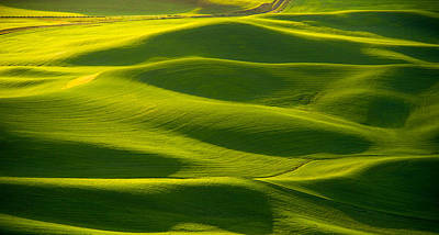 Photograph - Green Waves by Kunal Mehra