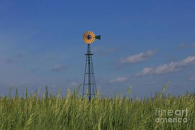 Photograph - Green Wheat  Field With Green And Yellow Windmill by Robert D  Brozek