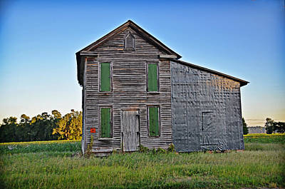 Photograph - Green Windows by Linda Brown