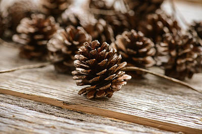 Background Photograph - Natural Wooden Background With Pine Cones by Brandon Bourdages