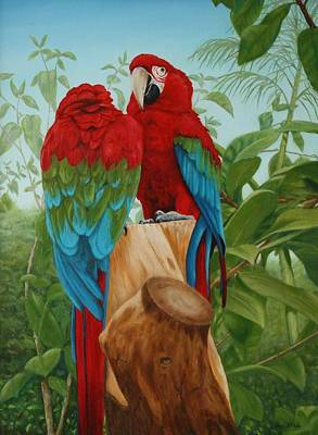 Dreamcatcher Painting - Green Winged Macaws   by Sid Ball