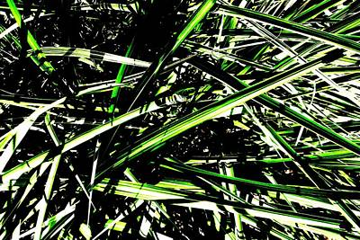 Photograph - Green Works by CJ Rhilinger
