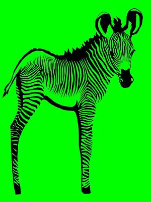 Zoo Animal Digital Art - Green Zebra by Cindy Edwards