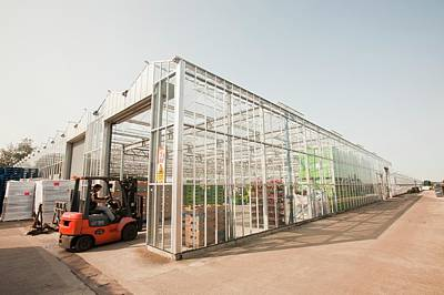 Lift Truck Photograph - Greenhouses On The Lancashire Mosslands by Ashley Cooper