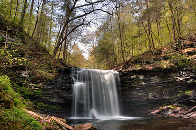 Photograph - Greening Trees Surround Harrison Wright Falls by Gene Walls